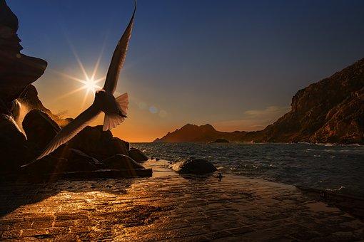 libertà spirituale